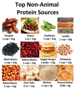 Protein3